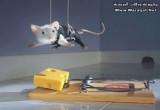 العاب صيد الفئران بالمصيدة