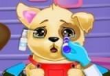 لعبة علاج الكلاب