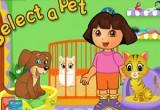رعاية حيوانات دورا