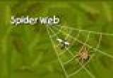 لعبة شبكة العنكبوت فلاش
