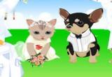 لعبة زفاف الحيوانات